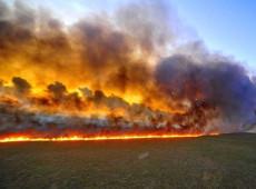 """""""Por más de que ahora se apague el fuego en el Amazonas, el daño ya está causado"""""""